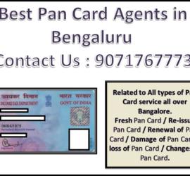 Best Pan Card Agents in Bengaluru 9071767773