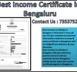 Best Income Certificate in Bengaluru 7353752277