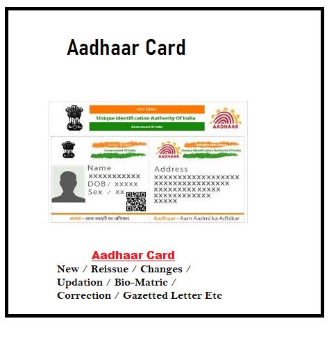 Aadhaar Card 101