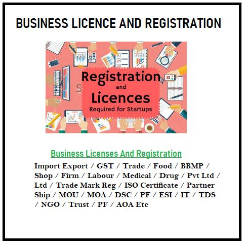 Buisness licence 167